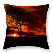 Sunset In The Field Throw Pillow