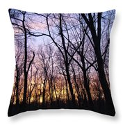 Sunset In The Forest Throw Pillow