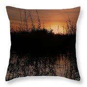 Sunset In The Pantenal Throw Pillow