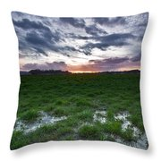 Sunset In The Swamp Throw Pillow