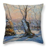 Sunset In The Winter Throw Pillow