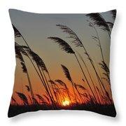 Sunset Island Beach State Park Nj Throw Pillow