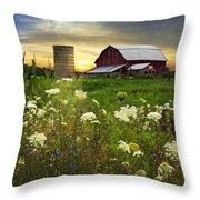 Sunset Lace Pastures Throw Pillow