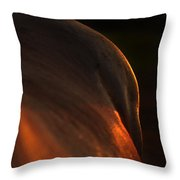 Sunset Landscape Throw Pillow by Renee Forth-Fukumoto