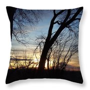 Idaho Sunset 1 Throw Pillow