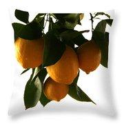 Sunset Lemons Throw Pillow