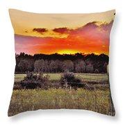 Sunset Meadow Throw Pillow