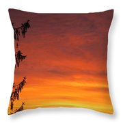 Sunset Of Life  Throw Pillow