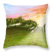 Sunset Of Spring Throw Pillow