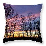 Sunset Of The Century Throw Pillow