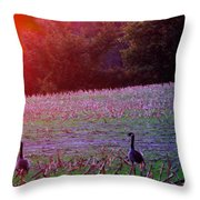 Sunset On Mallards Throw Pillow