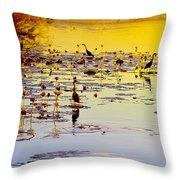 Sunset On Parry's Lagoon Throw Pillow