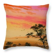 Sunset On The Coast Throw Pillow by James Williamson