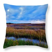 Sunset On The Marsh Throw Pillow