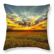 Sunset Over Field Throw Pillow