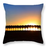 Sunset Over Tree Lined Road Throw Pillow