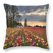 Sunset Over Tulip Flower Farm In Springtime Throw Pillow