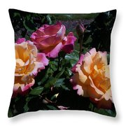Sunset Painted In Roses Throw Pillow