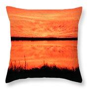 Sunset Panarama Lacassine Throw Pillow