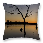 Sunset Riverlands West Alton Mo Portrait Dsc06670 Throw Pillow