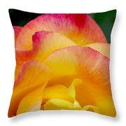 Sunset Rose At Dawn Throw Pillow by Christine Burdine