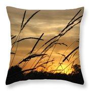 Sunset Sentinels Throw Pillow