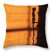 Sunset Shadow Indoor Throw Pillow
