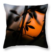 Sunset Silhouette 2 Throw Pillow