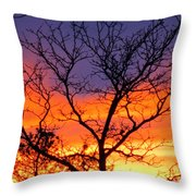 Sunset With Tree Silhouette Throw Pillow