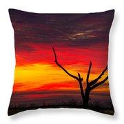 Sunset Solitude Throw Pillow