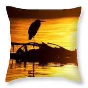 Sunset Still Throw Pillow