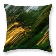 Sunset Swipe Throw Pillow