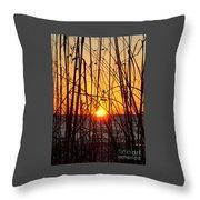 Sunset Through Grasses Throw Pillow