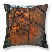 Sunset Through The Forest Throw Pillow