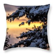 Sunset Through The Snowy Branches Throw Pillow