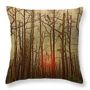 Sunset Thru The Pine Barrens Throw Pillow