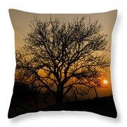 Sunset Tree Throw Pillow by Anne Gilbert