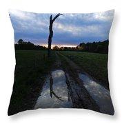 Sunset Treeflection Throw Pillow