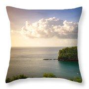 Sunset Twilight Throw Pillow