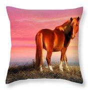 Sunset Wild Throw Pillow
