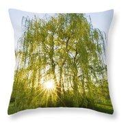 Sunset Willow Throw Pillow