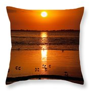 Sunset With The Birds Photo Throw Pillow