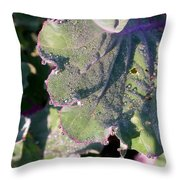 Sunshine And Dew Throw Pillow