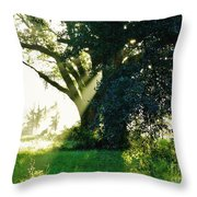 Sunshine And Sunbeams Throw Pillow