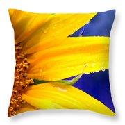 Sunshine Blue Throw Pillow