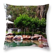 Sunshine Coast Throw Pillow