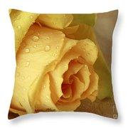 Sunshine Delight Yellow Rose Throw Pillow