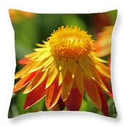 Sunshine Flowers Throw Pillow