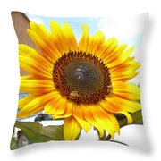 Sunshine In Country Farm Throw Pillow