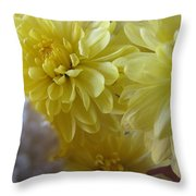 flower - Sunshine in Petals Throw Pillow